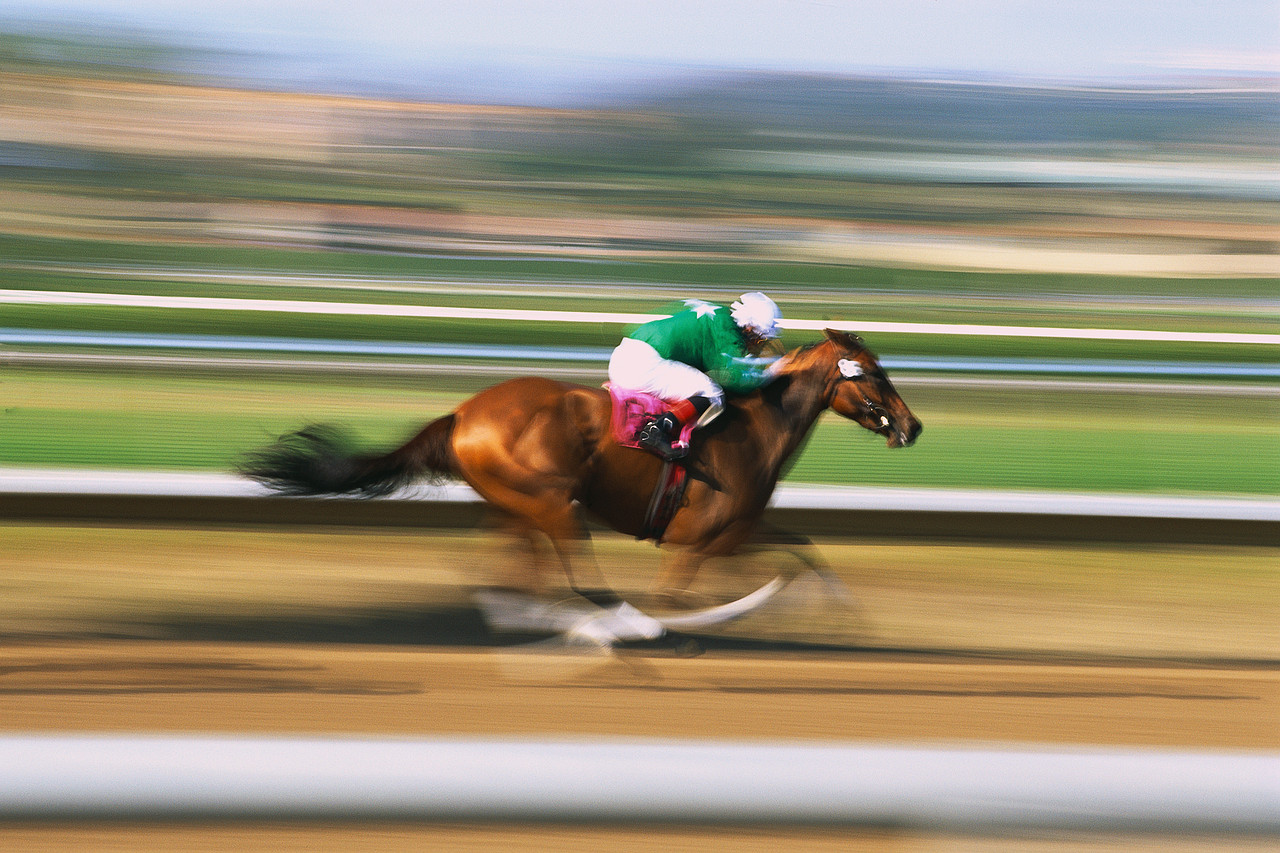 ca. 1999, Del Mar, California, USA --- Horse Racing at Track --- Image by © Royalty-Free/Corbis