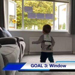 Goal 3 Window